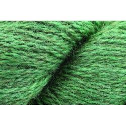 Rowan Moordale 0013 Eucalyptus