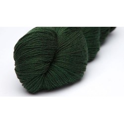 Definition Sock Yarn 2098 Crocodile